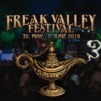vig festival 2018
